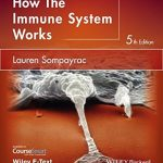 How the Immune System Works (The How it Works Series)