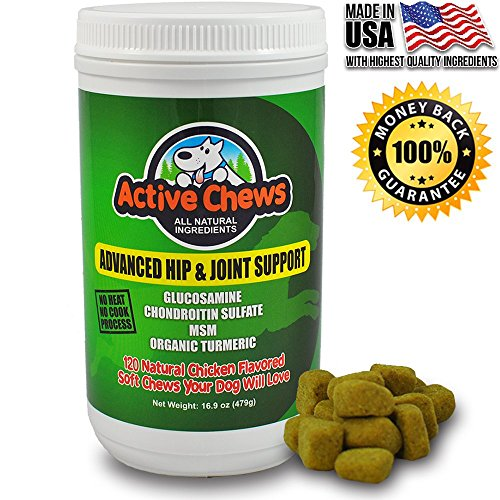 Premium Hip and Joint Dog Treats by Active Chews - Glucosamine for Dogs, Chondroitin MSM and Turmeric for Dogs - Extra Strength Supplement with Arthritis Pain Relief for Dogs