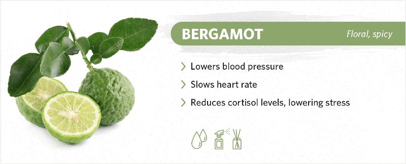 scents-to-help-you-sleep-bergamot