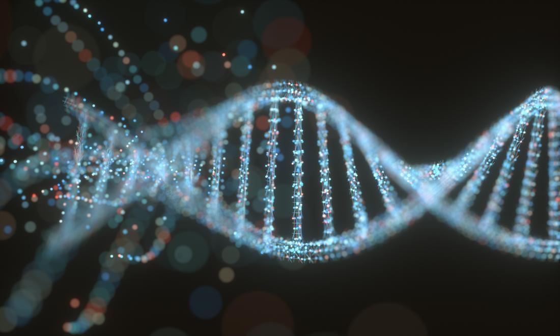 Gene strand