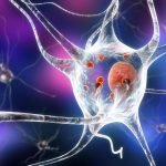 Medical News Today: Scientists confirm the role of 'molecular switch' in Parkinson's disease