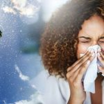 Pollen count: High counts forecast in UK cities – how to keep hay fever symptoms at bay