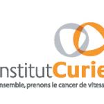 Cancer support foundation France