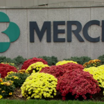 NICE rejects Merck's Keytruda kidney cancer combo, keeping pressure off BMS